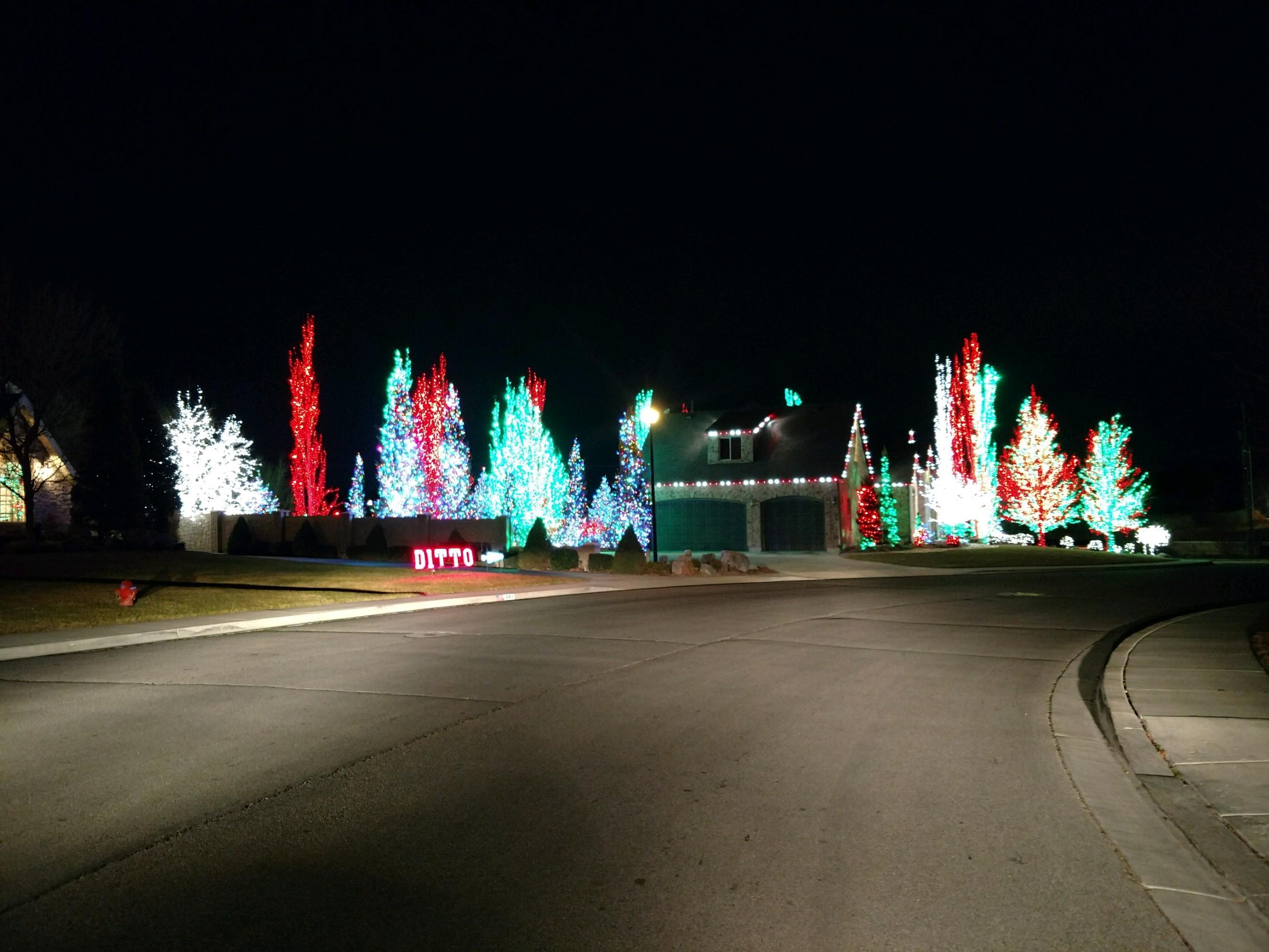 Christmas Lights Ditto