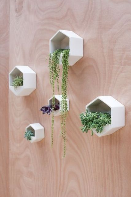Hanging Window Sill Planters