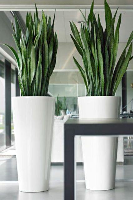 Oversized Vase Home Decor