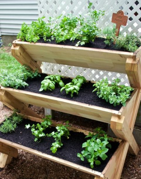 Vegetable Garden Box Concrete