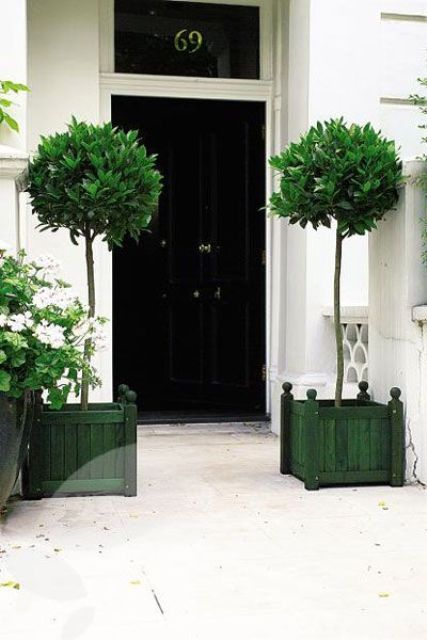 Tall Planters Front Porch