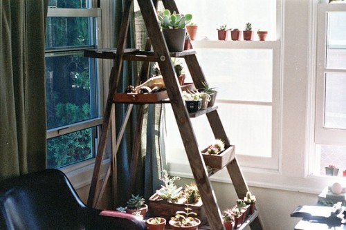 Christmas Decorating Ideas Shelves