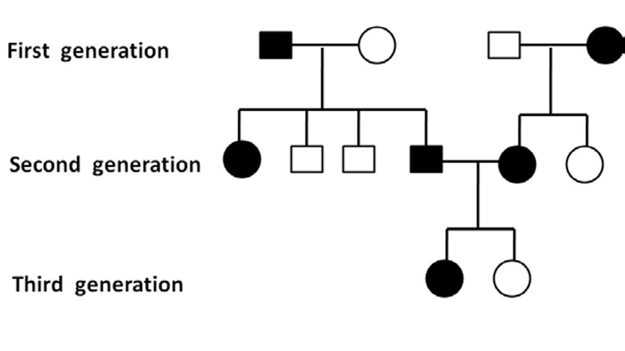 2 Traits Pedigree Chart