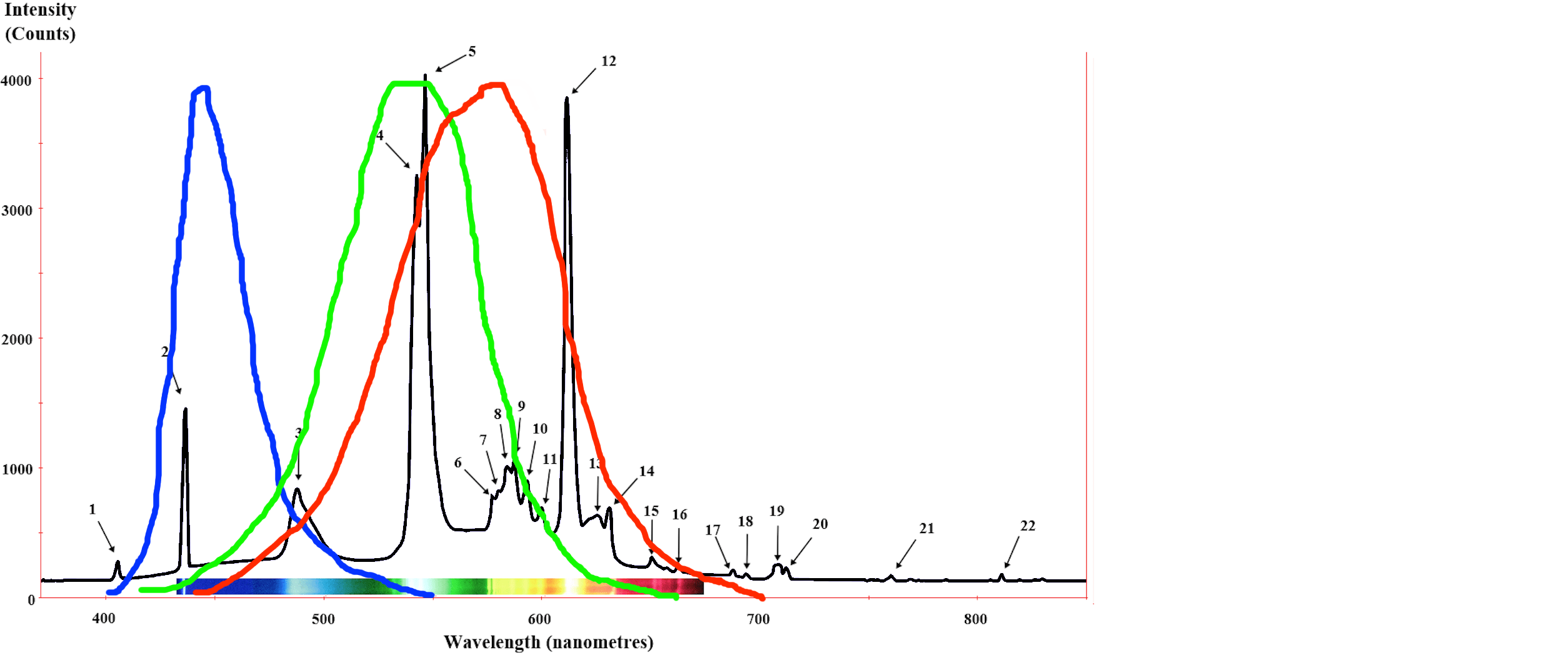 Red Spectrum Fluorescent Light Bulbs