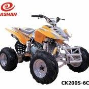 Quad Bashan 250 Atv (3)
