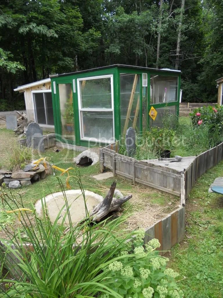 New Tort Shed And Pen For Sulcata Tortoise Forum