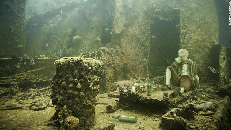 Underwater Plants Sale