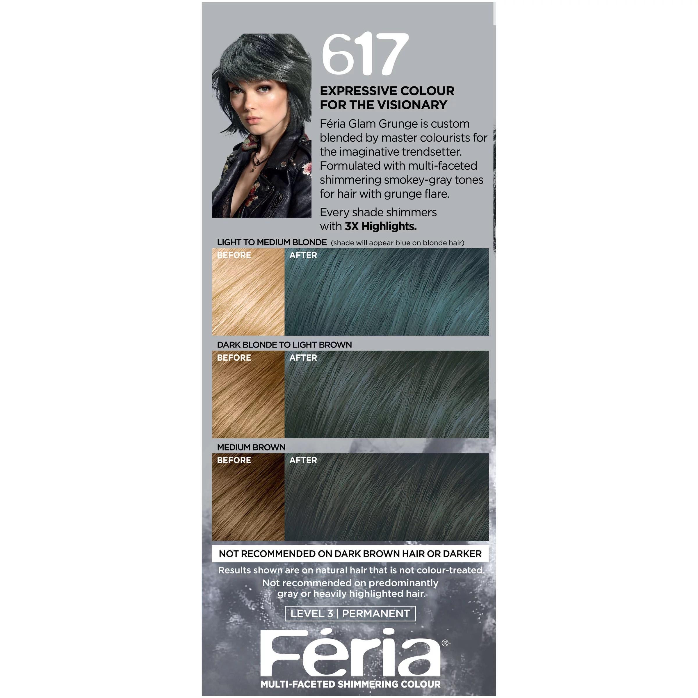 Dark Brown Violet Hair Color Feria