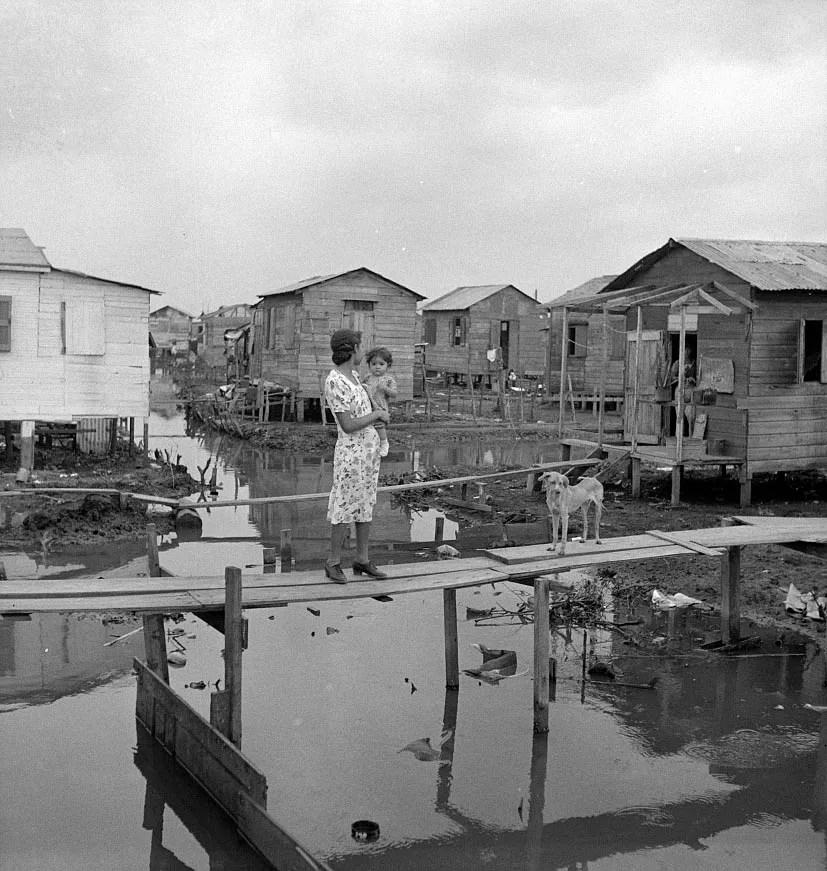 El Fanguito Puerto Rico