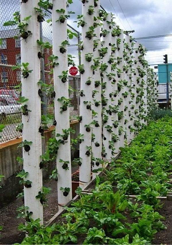 Raised Wooden Garden Planter