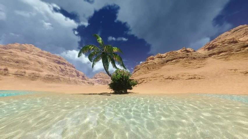 Oasis In The Sahara Stock Footage Video 985030 - Shutterstock