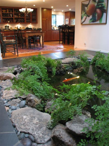 Fish Pond House Design