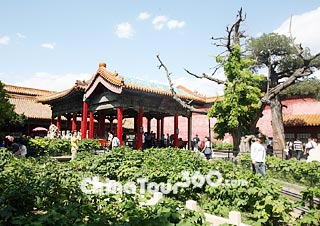 Beijing Weather Conditions  Forecast with Climate Graph Beijing Weather  Ask Question  Forbidden City in Summer