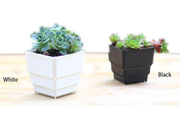 MOQ Wholesale Breathing And Root Growth Square Flower Pot Bonsai     MOQ Wholesale Breathing And Root Growth Square Flower Pot Bonsai Nursery  Planter Lithops Creative Grow Pots for Home Garden Planter Large Plant Pot  Flower