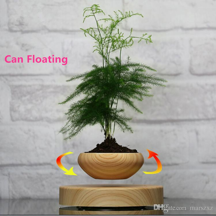 Levitating Bonsai Pot