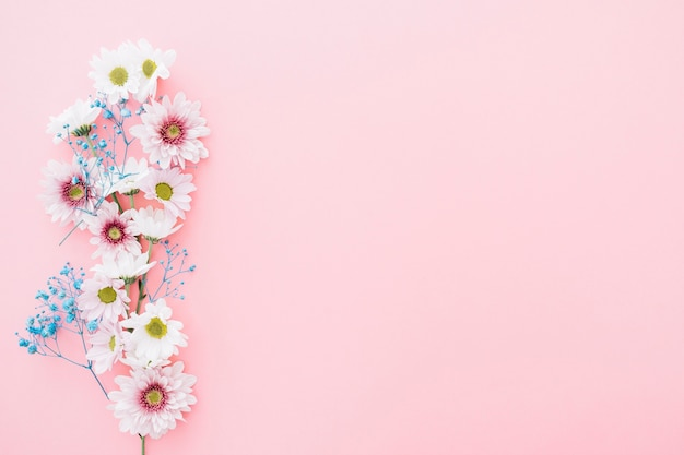 Cute flowers on pink background with space on right Photo   Free     Cute flowers on pink background with space on right Free Photo
