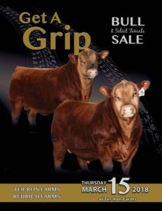 Get a Grip Bull Sale 2018 by The Big Picture of Design Inc    issuu Page 1