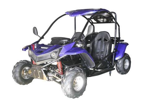 T Rex 125cc Scooters Atvs Utvs Gokart Motorcycles Dirt Bikes