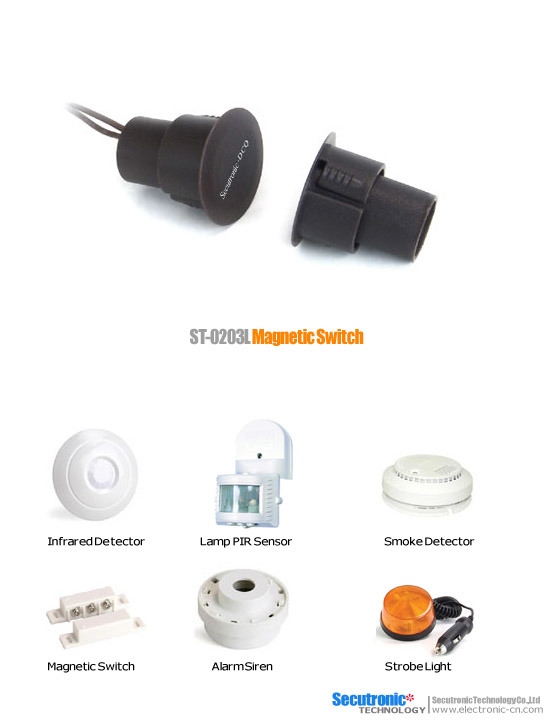 Magnetic No Security Switches