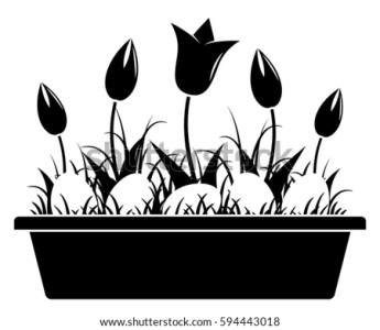 Black Planter Vectors   Download Free Vector Art  Stock Graphics     vector tulips and easter eggs in planter isolated on white background
