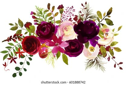 Burgundy Images  Stock Photos   Vectors  10  Off    Shutterstock Watercolor Boho Burgundy Red Magenta White Pink Floral Bouquet Flowers and  Feathers Isolated