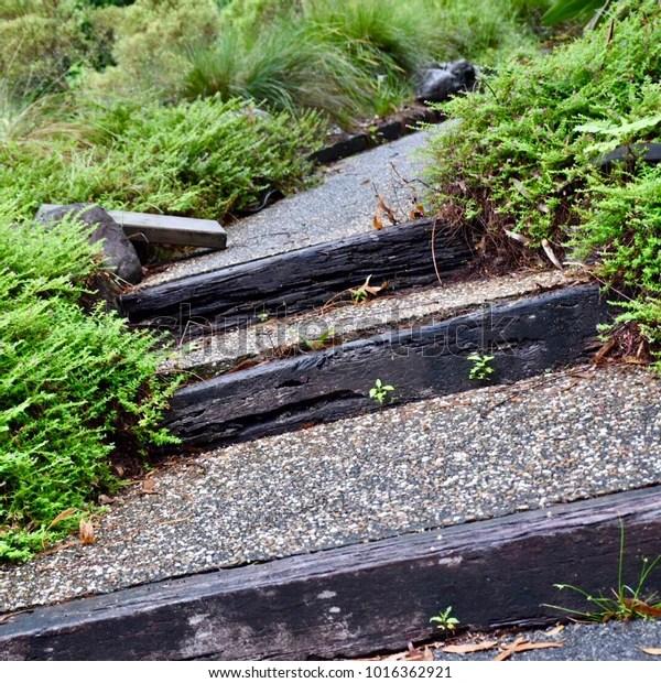 Outdoor Garden Steps Stock Photo Edit Now 1016362921   Outdoor Garden Under Stairs   Exterior   Walkway   Crosstie   Gardening   Simple
