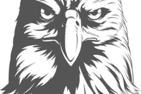 American Indian Heritage Day Bald Eagle With Blue And Red Face Paint Sketch Blog Reference Of Bateluer