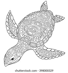 coloring pages turtle # 28