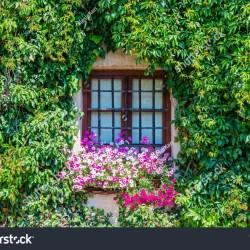 Backgrounds Old English Garden Wooden Window Facade House Stock Photo 685281931