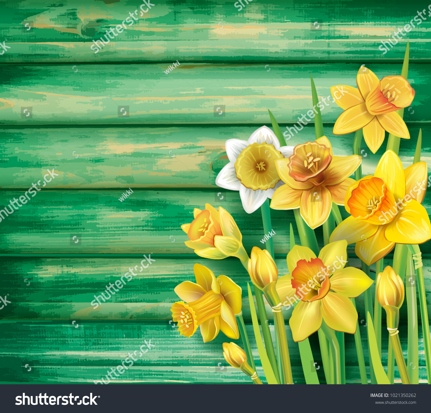 Daffodils Flowers On Wooden Background Stock Vector 1021350262     Daffodils flowers on the wooden background