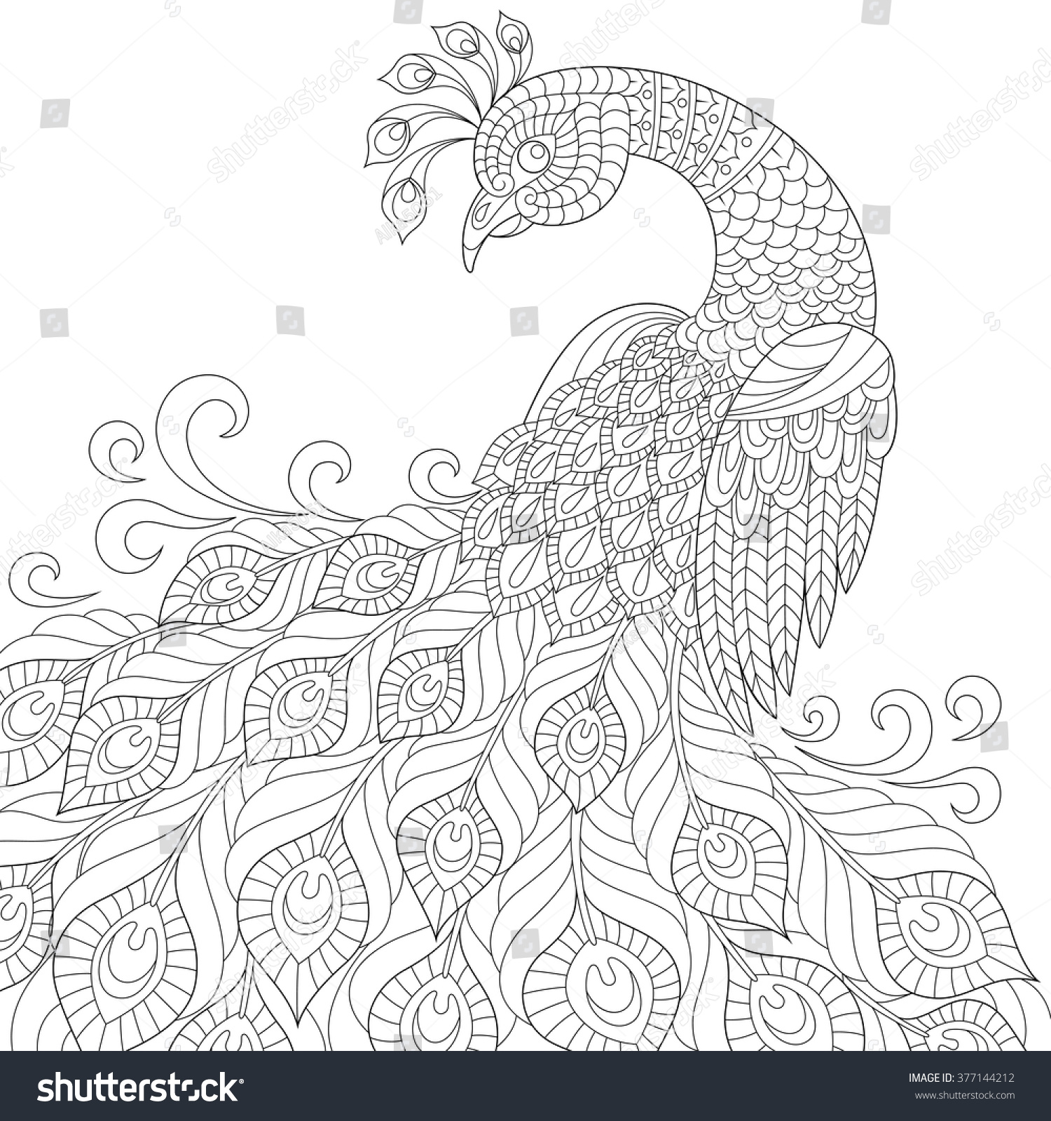 Decorative Peacock Adult Antistress Coloring Page Stock Vector
