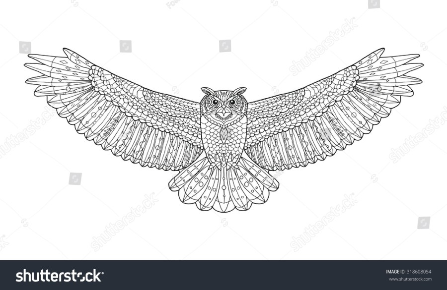 Eagle Owl Coloring Page Animal Collection Stock Vector Royalty Free Hand Drawn
