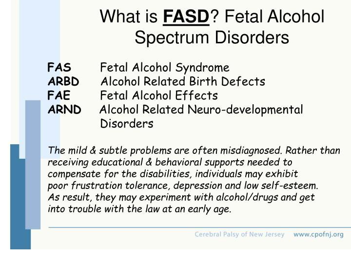 Drug Abuse Birth Defects