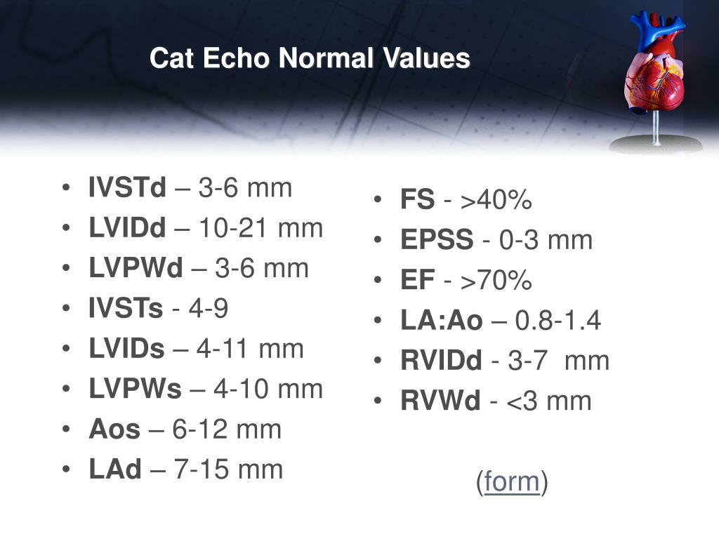 PPT - Basic Echocardiography PowerPoint Presentation - ID ...