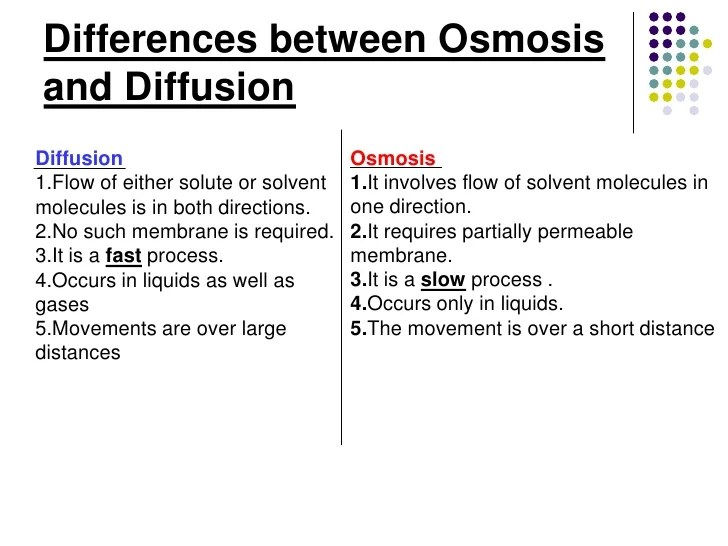 Diffusion And Osmosis Active Transport Venn Diagram On