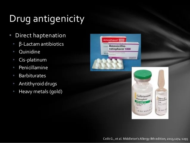 Cross Allergy Penicillin