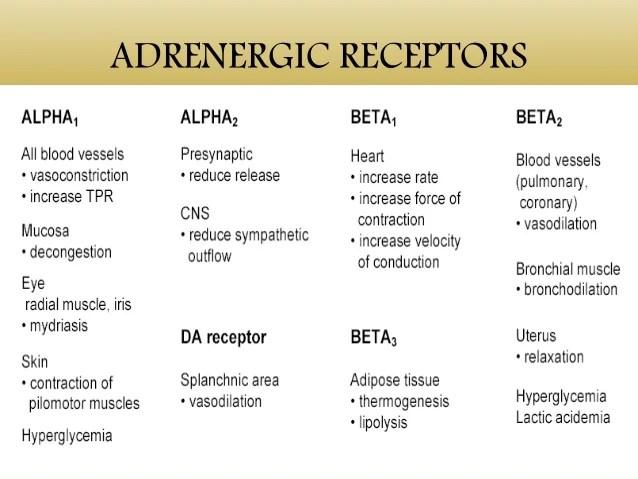 What Are Beta Receptors Alpha
