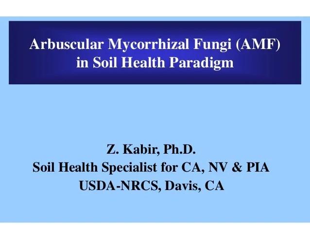 Arbuscular mycorrhizal fungi kabir