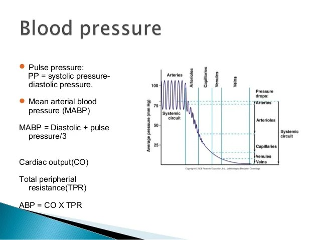 Blood Pressure Aterial Cable