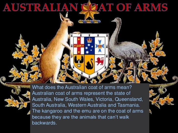 Coat Arms Animal Meanings