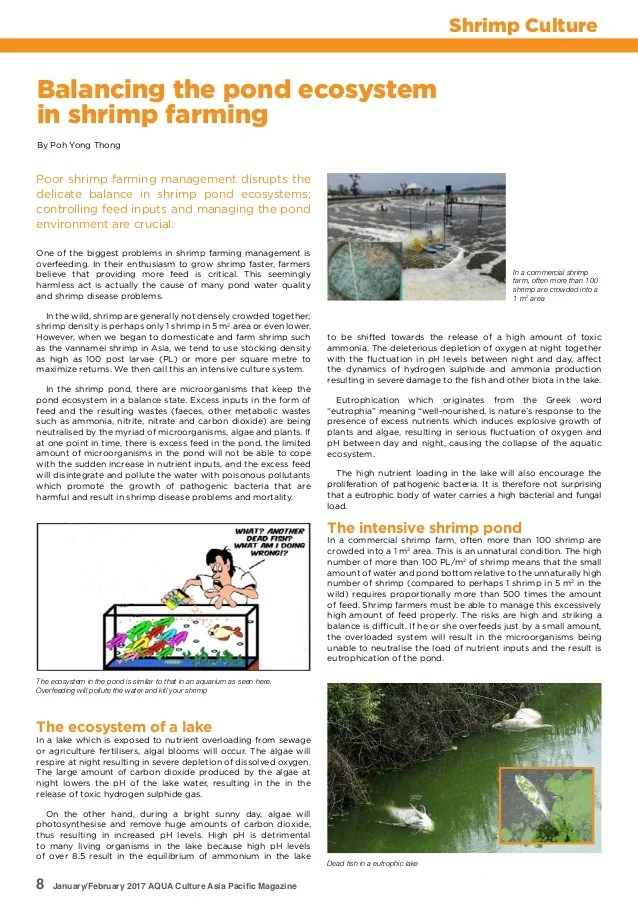 Shrimp Culture Pond Design Operation And Management