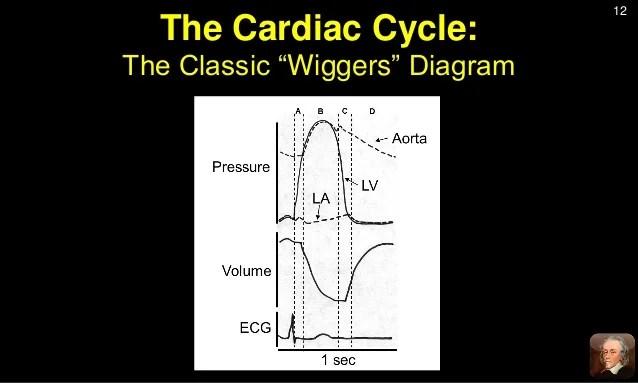Diastolic Wiggers Diagram