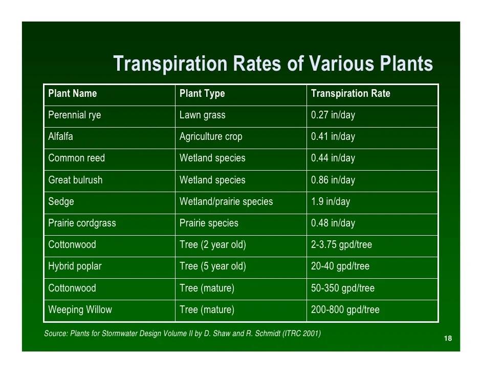 Native Prairie Plants Buffer