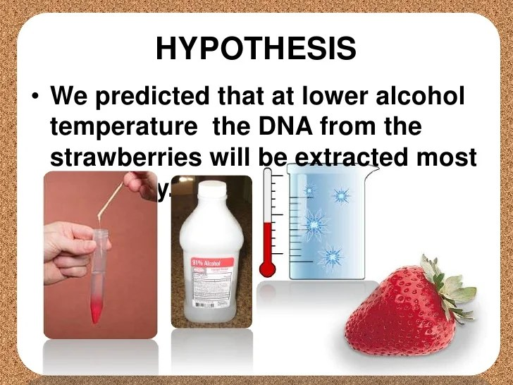 strawberry dna extraction results