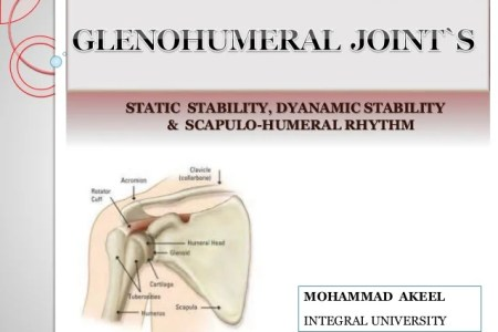 Interior Inferior Humeral Glide Full Hd Maps Locations Another