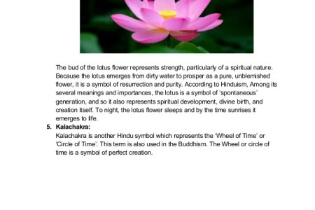 What does the lotus flower represent korean artists 2018 korean pink lotus flower meanings and symbolisms lotus flower heart lotus meaning lotus flower symbolism the beautiful lotus flower lotus flower color meaning mightylinksfo