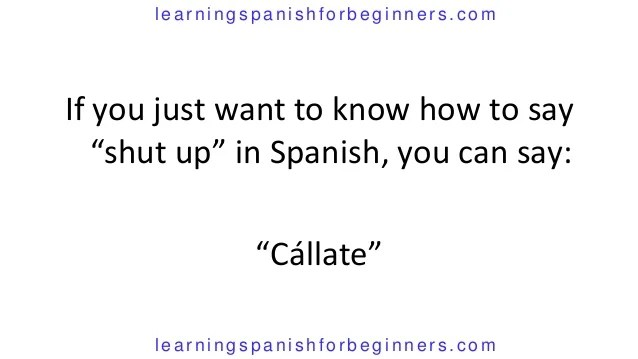 How Say Just Spanish