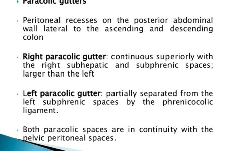 interior inferior paracolic gutter » Full HD MAPS Locations ...