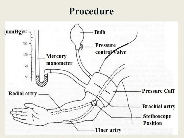 Fundamental of Nursing 5. : Vital Signs Cont.
