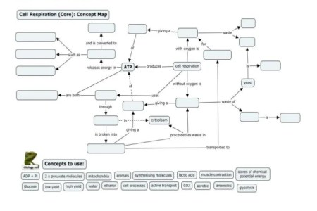 Concept map photosynthesis path decorations pictures full path photosynthesis concept map answers biology photosynthesis concept mapping worksheet diagram quizlet location a completed concept map about ccuart Images